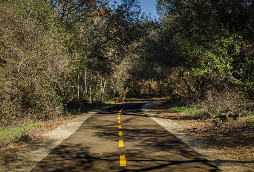 I finally took my camera out for my first photos of 2017! It was a beautiful day to hit the trail along Willow Creek in Folsom, CA. Beauty In Nature Day Empty Road Growth Nature No People Outdoors Road Scenics The Way Forward Trail Tranquility Transportation Tree Winding Road
