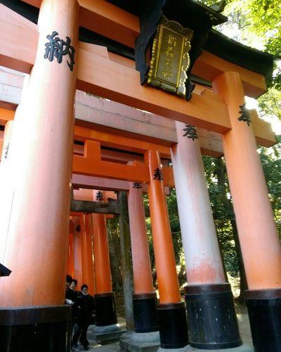 千本鳥居 伏見稲荷大社 2017冬旅🐾👣🚗 Scenery Special_spot_ Sunny Kyoto,japan Architectural Column Architecture Built Structure Travel Destinations Building Exterior