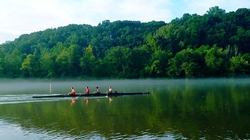 Sunday morning row on the Chattahoochee. Roswell, GA Nature Leisure Activity Rowing Outdoors Water Teamwork Riverside River Bank  Relaxing River River View Boating In A River