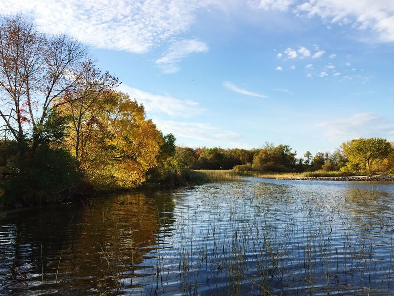Minnesota Autumn 🍁🍂 Water Tranquil Scene Tree Tranquility Waterfront Scenics Lake Beauty In Nature Calm Nature Sky Day Non-urban Scene Cloud Growth Countryside Majestic Outdoors Remote Blue Minnesota Minnesota Nature Lake View Autumn Nature