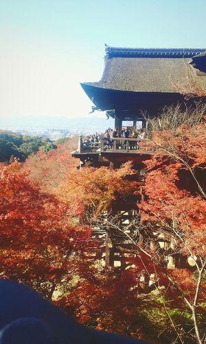 Japan Tourjapan Wonderful Place