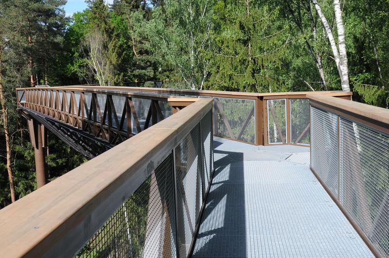 Empty footbridge against trees