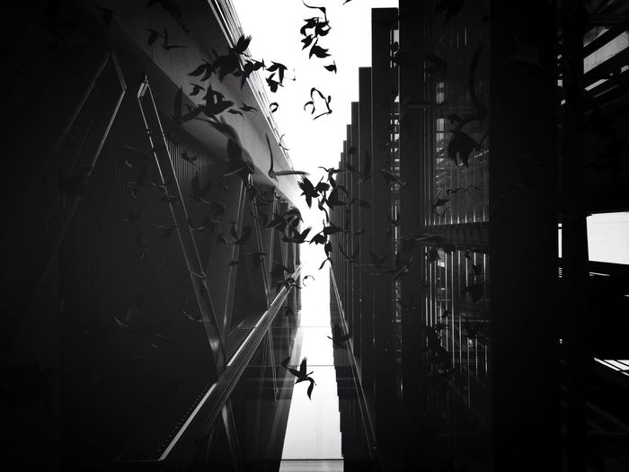 Leave my loneliness unbroken The Illusionist - 2014 EyeEm Awards IPhoneography Eye4black&white