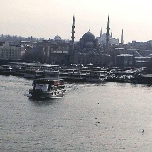 Istanbul #turkiye Eyemphotography Eyeembestshots Eyeembestedits Eyeem First Eyeem Photo