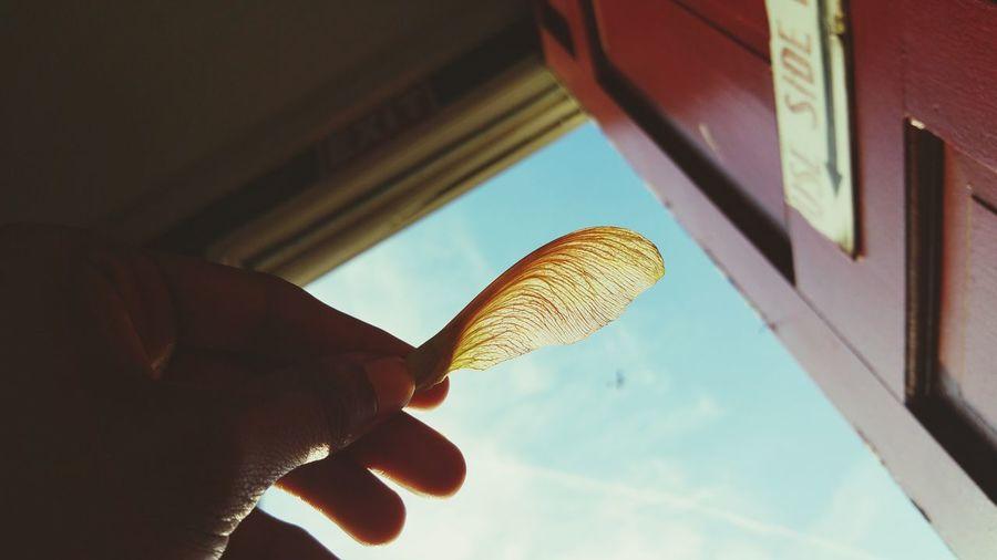 Sidedoor Life Hiatus Over Sky Intheclouds