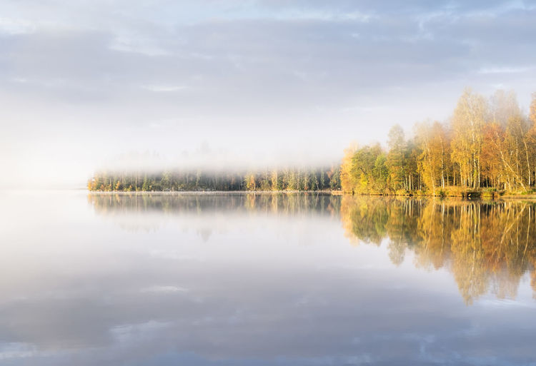 Scenic landscape with lake and fall colors at morning light Atmospheric Mood Autumn Beauty In Nature Blue Colors Fog Lake Landscape Light Mist Morning Mountain Nature No People Outdoors Peaceful Reflection Scenics Sky Sunrise Tranquil Scene Tranquility Tree Water Yellow