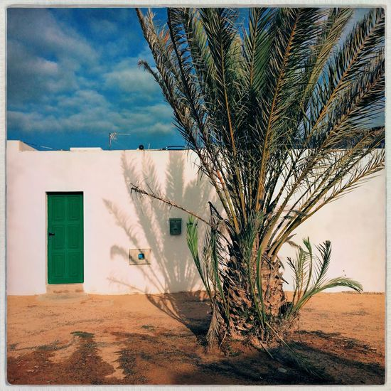 Graciosa Lagraciosa EyeEm Selects Built Structure Architecture Building Exterior Plant Tree Auto Post Production Filter No People Outdoors House Sunlight