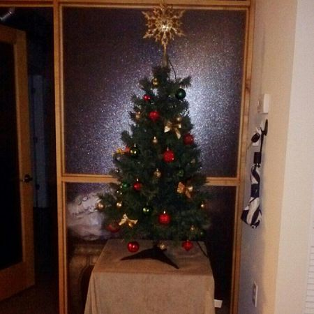 Firstchristmastree Gold Green Red short iloveit holidays
