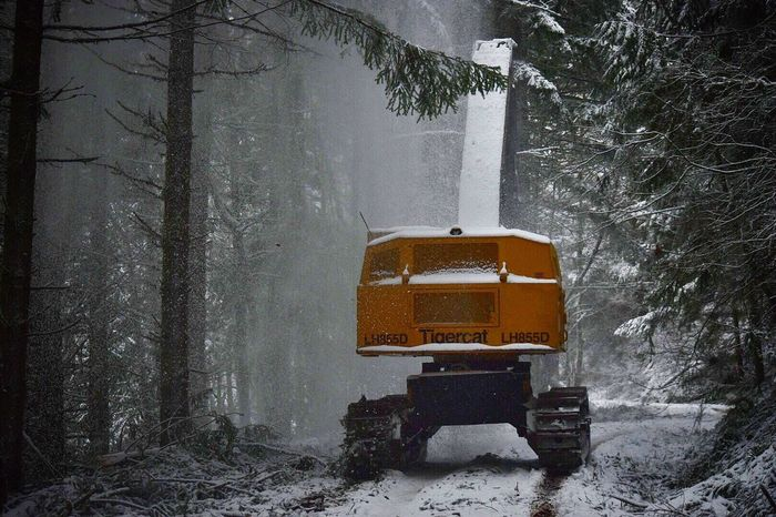 Winter Snow Cold Temperature Tree Transportation Bare Tree Snowing Weather Mode Of Transport Nature Frozen Road No People Outdoors Beauty In Nature Day Snow ❄ Logging Heavy Equipment Logging Equipment Logging Roads Outdoor Photography Outside TigerCat Machinery