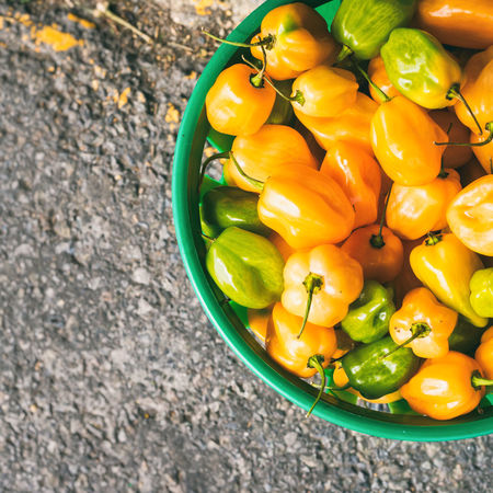 Top view of a bucket full of green and yellow mini bell peppers with vintage effect Close-up Day Food Food And Drink Freshness Green Green Color Healthy Eating High Angle View Mini Bell Peppers No People Outdoors Peppers Vegetable Vegetarian Food Yellow Yellow Color