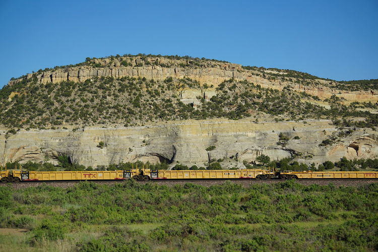Freight train by grassy field against mountain