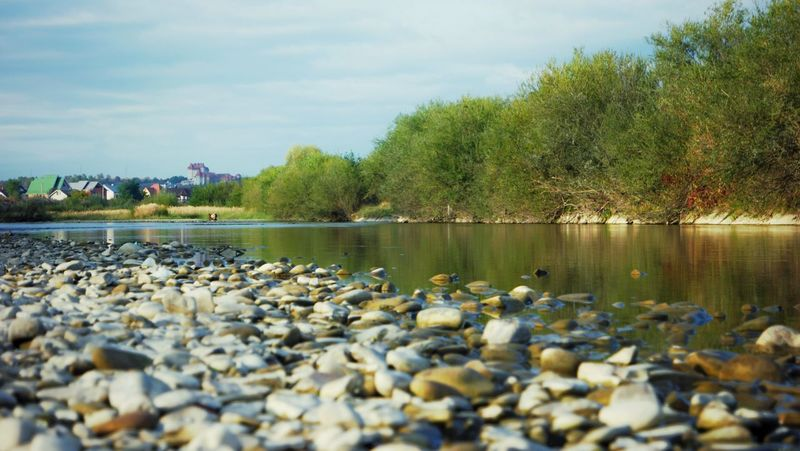 Outdoors Water Clear Water Patterns In Nature Landscape Nature Background From My Point Of View Water Reflections Autumn No People Autumn Colors River Riverside River View Riverscape Carpathians Rural Scene Evening Light Pebble Pebbles And Stones Pebbles And Water Pebble Beach Pebbles On A Beach
