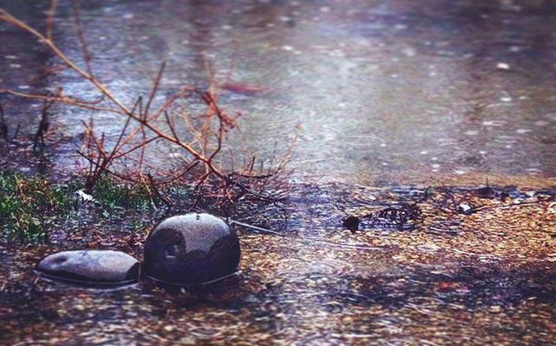 Когда понедельник, дождь, как из ведра, настроение нихрена не рабочее, но зато за окном убогий ландшафт преобразился в дзен-пруд☔🙏 Wigandt_photo Wigandt Kzoom Rainfall ливень Дождь Анапа Сукко Allanapa Garden Zengarden наработе вдцсмена Smena_camp вдохновение дзен красотавовсем пруд Landscape пейзаж Природа Nature видизокна настроение зима зиманаюге югРоссии instaart instanature instaphoto