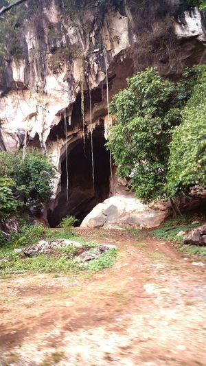 nature :-D First Eyeem Photo