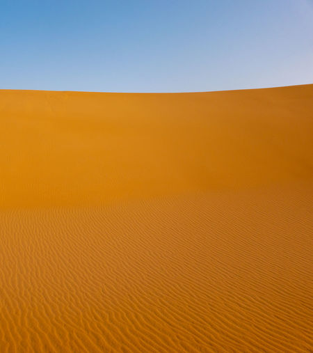 Abstract image of the surface of a dune in the Sahara in Sudan Sand Landscape Sky Desert Land Scenics - Nature Sand Dune Environment No People Climate Arid Climate Nature Blue Clear Sky Beauty In Nature Day Tranquility Orange Color Barren Horizon Outdoors