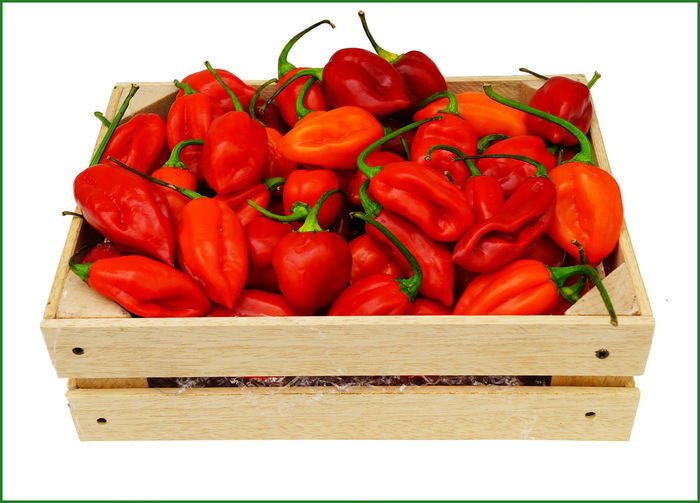 Close-up Day Food Food And Drink Freshness Habanero Habanero Peppers Habanero Red Habanerohotsauce Habañeros Healthy Eating Hot Chili Hot Chili Peppers Market Nature No People Outdoors Peperoncino Peperoncino Piccante Pepper Peppers Piccante Red Vegetable White Background