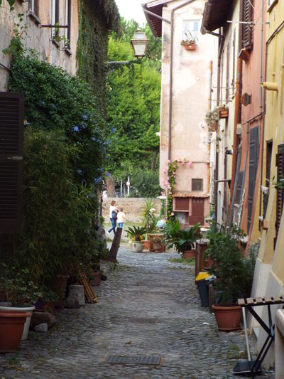 Alley amidst houses and buildings in city