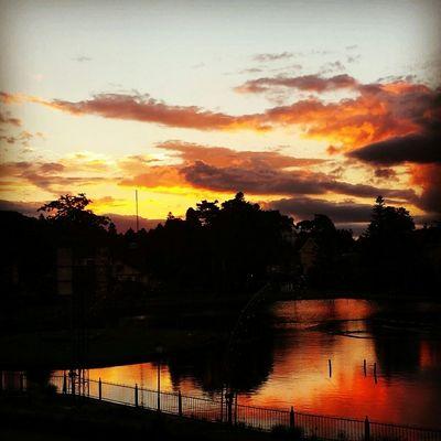 Sunset Good Day