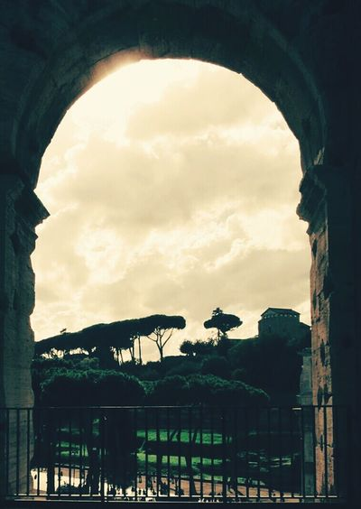 From inside the Colosseum, Rome First Eyeem Photo