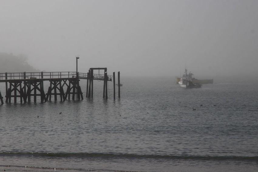 Pier Foggy Day Sea Water Sky Horizon Over Water Scenics - Nature Horizon Tranquil Scene