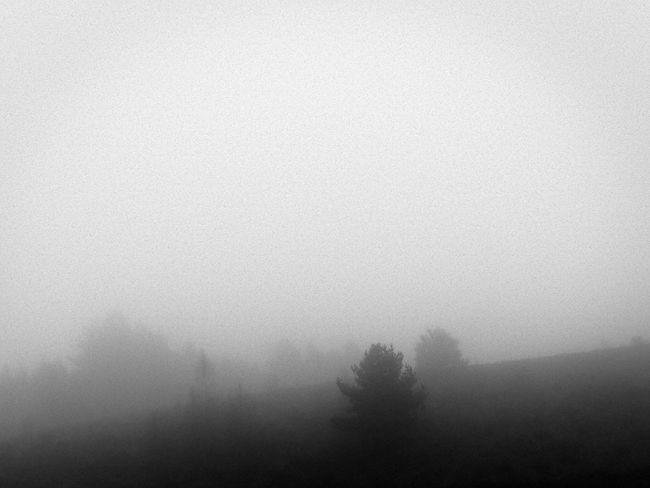 Beauty In Nature Claudetheen Cold Temperature Fog Foggy Landscape Mist Tranquil Scene Weather Winter