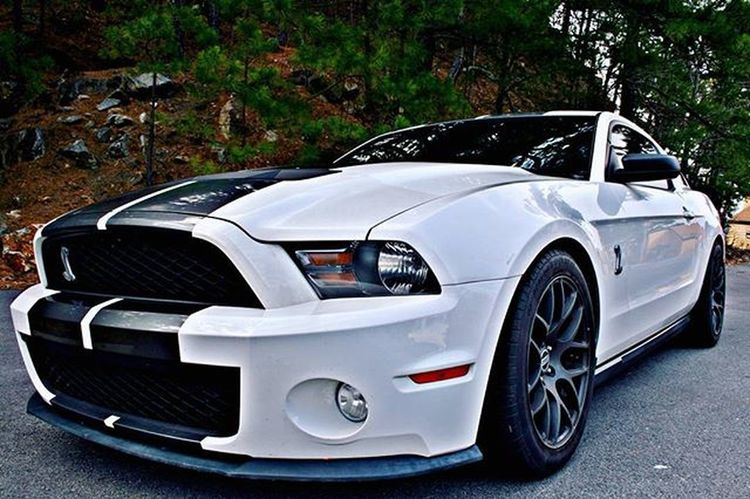 Shellby Shelbygt500 Shelbymustang Mustang Photo Photography Cannon Cannonphotography Car Ford Ford Fordrasing RebelXti Awesome Awesomecar AwesomeCars Epic Epicpic EpicPhoto @autofocusaus