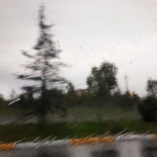 YouareeverywhereLAMASAB Lamasab Withoutyou Raining Rain Cloudy Erbil Kurdistan Hawler Road Street Masif Pirmam