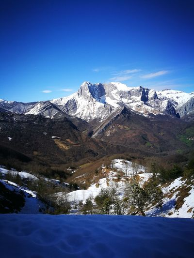 Mountain Snow Cold Temperature Winter Snowcapped Mountain Blue Mountain Peak Clear Sky Pinaceae Sky
