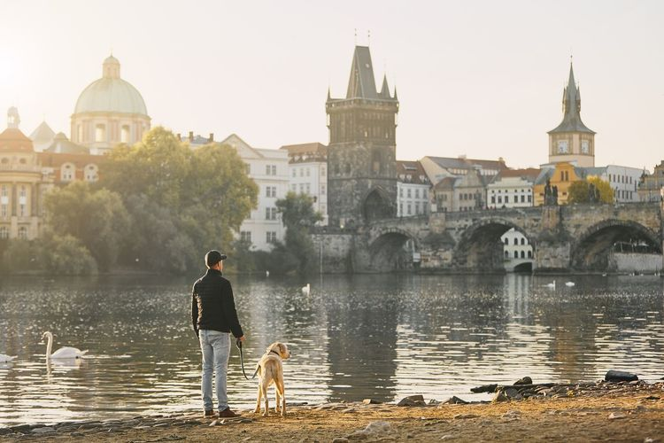 Rear view of man with dog by river against buildings