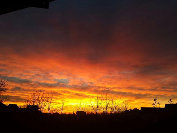 Sky is burning today. Winter looks pretty much like spring for now. Wintertime Slavonski Brod Croatia Sky Burning Sky Orange Sky