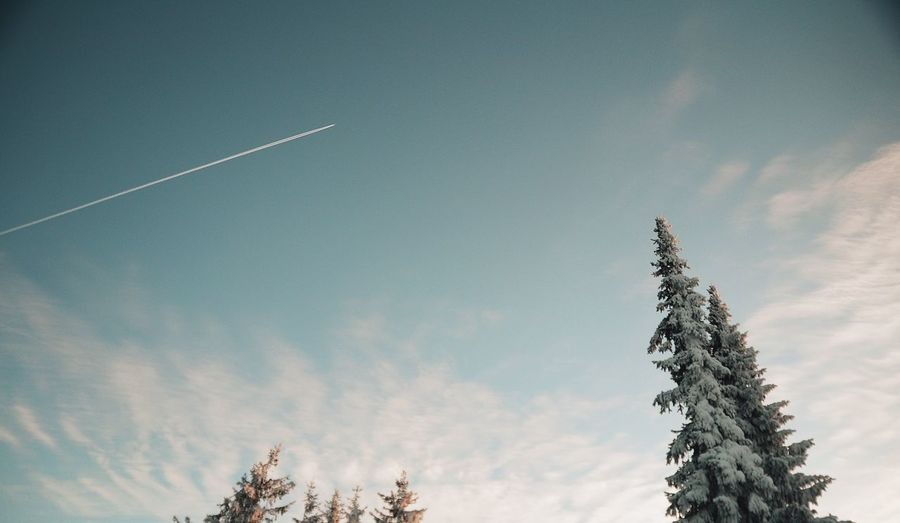 Low angle view of vapor trail in winter
