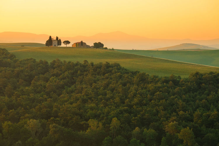 Sunrise on Tuscany hill, Italy Landscape Scenics - Nature Sky Tranquil Scene Beauty In Nature Tranquility Sunset Landscape Plant Environment Tree Idyllic Nature Non-urban Scene Growth Land Orange Color Green Color Field Mountain Outdoors Sunrise Golden Hour My Best Photo