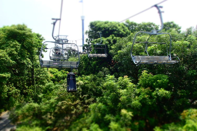 our 1st skyride... fun, happy ans phobia :p April Showcase Exposed In Nature EyeEm 2016 EyeEm Nature Lover High Angle View Lugeandskyridesingapore The Tourist The Travel Intern