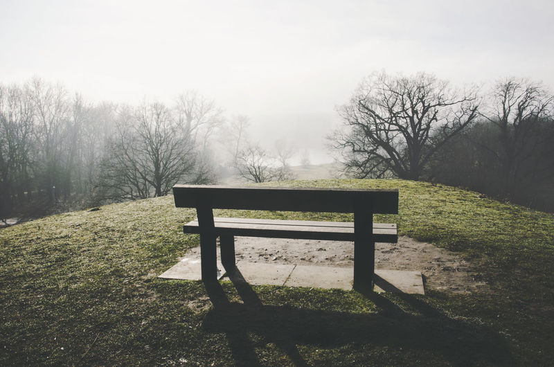 The view on the lake from the hill. Nature Outdoors Plant Beauty In Nature Tree Tranquility Fog Land Lake Landscape Atmospheric Mood Ambiance Green Day Countryside Bare Tree No People Tranquil Scene Scenics - Nature England Norwich Non-urban Scene Empty Park Bench Bench