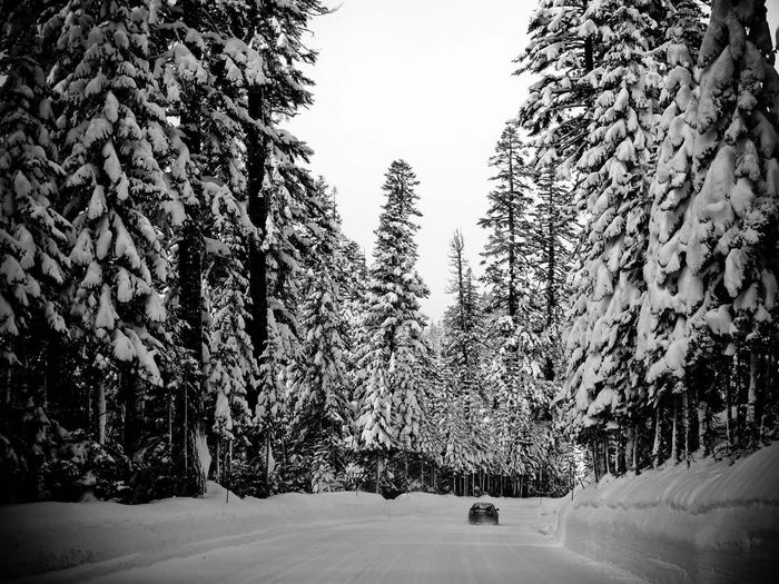 Winter Road Tripping Love Snow Winter Snowboarding Mountains Photography