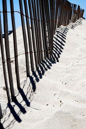 Perspective The Week on EyeEm Absence Background Background Texture Backgrounds Barrier Beach Beach Fence Boundary Built Structure Fence Focus On Shadow In A Row Land Nature Pattern Sand Shadow Sunlight Sunny The Way Forward vanishing point Warm Wood - Material