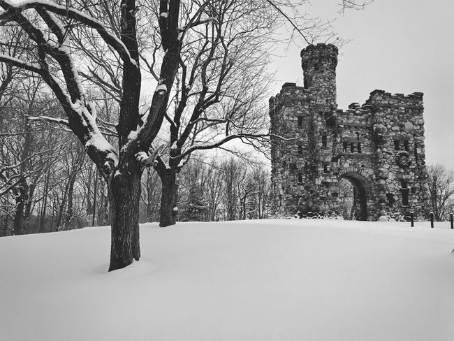 Bancroft Tower at Salisbury Park Built Structure Tree Architecture History Building Exterior Bare Tree The Past Old Ruin Castle Outdoors Day No People Medieval Sky
