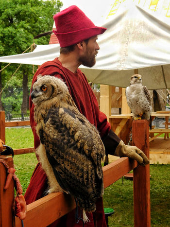Animal Themes Animal Wildlife Animals In The Wild Bird Bird Of Prey Casual Clothing Day Falcon Gufo Human Hand Hunt Hunting Bird Lifestyles Mammal One Animal One Person Outdoors Owl People Perching Real People Russia Tent Tradition Traditional Clothing