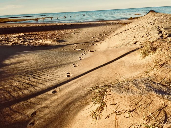 Beach Beauty In Nature Day FootPrint High Angle View Horizon Horizon Over Water Land Marram Grass Nature No People Outdoors Sand Scenics - Nature Sea Shadow Sky Sunlight Tranquil Scene Tranquility Water The Great Outdoors - 2018 EyeEm Awards