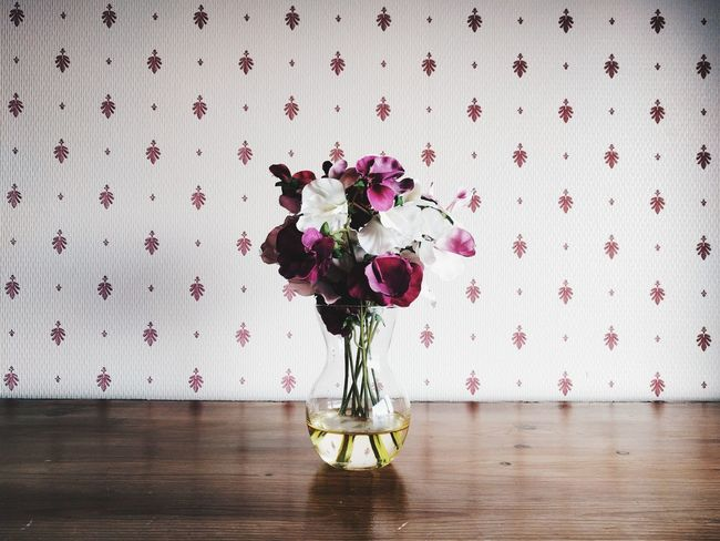Flower in a room. Wallpaper Indoors  Delicate Interior Flower Flowers Vase Vase Of Flowers Minimal Close-up