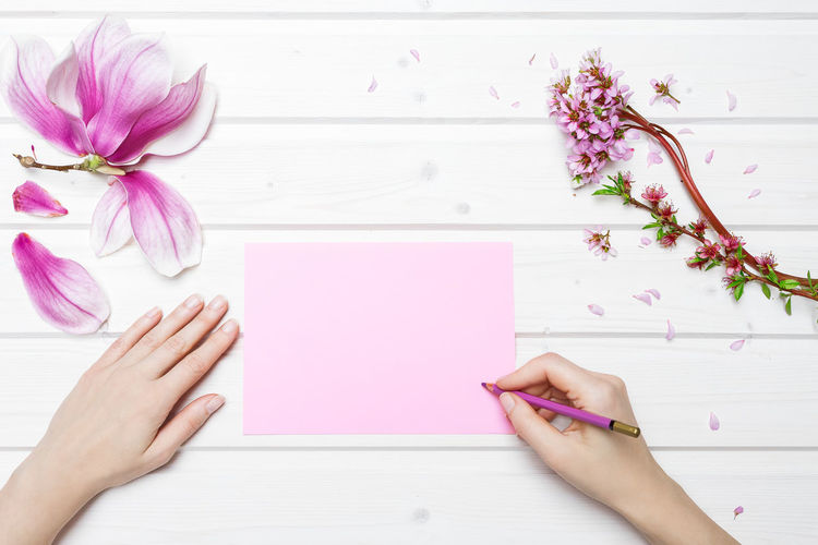 Directly Above Female Hand Writing Female Hands Working Flower Human Body Part Human Hand Magnolia Flower Paper Pink Color Shipdeck Shipdeck Table Table