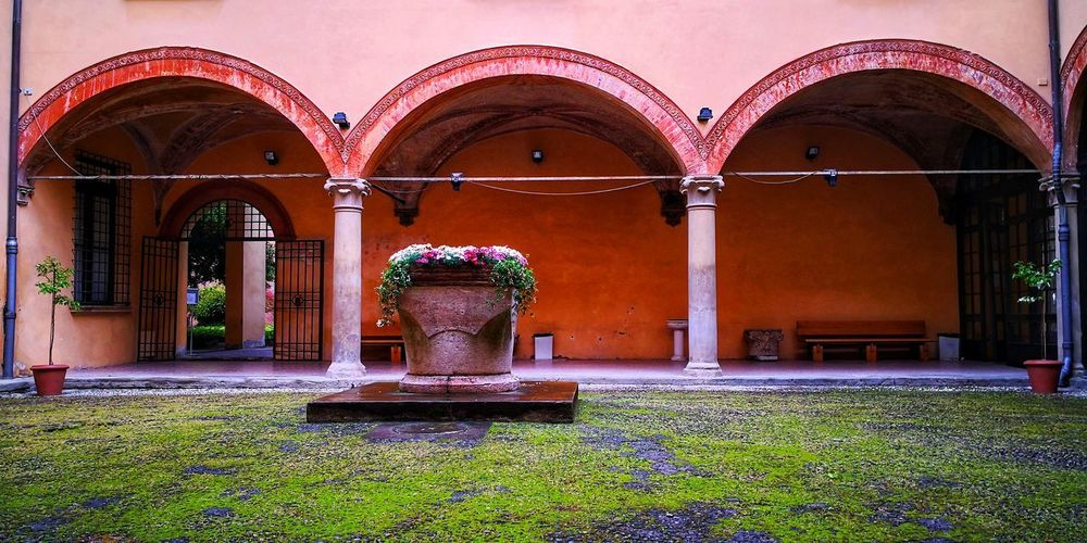 University University Campus Bologna, Italy Historical Building Flower Flower King - Royal Person Arch Doorway Architecture Sculpture Architectural Column Entryway Colonnade Fountain Courtyard
