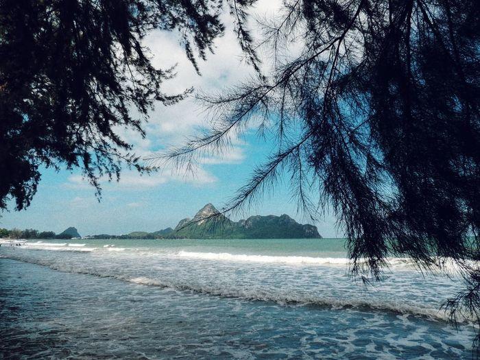 sea Summertime
