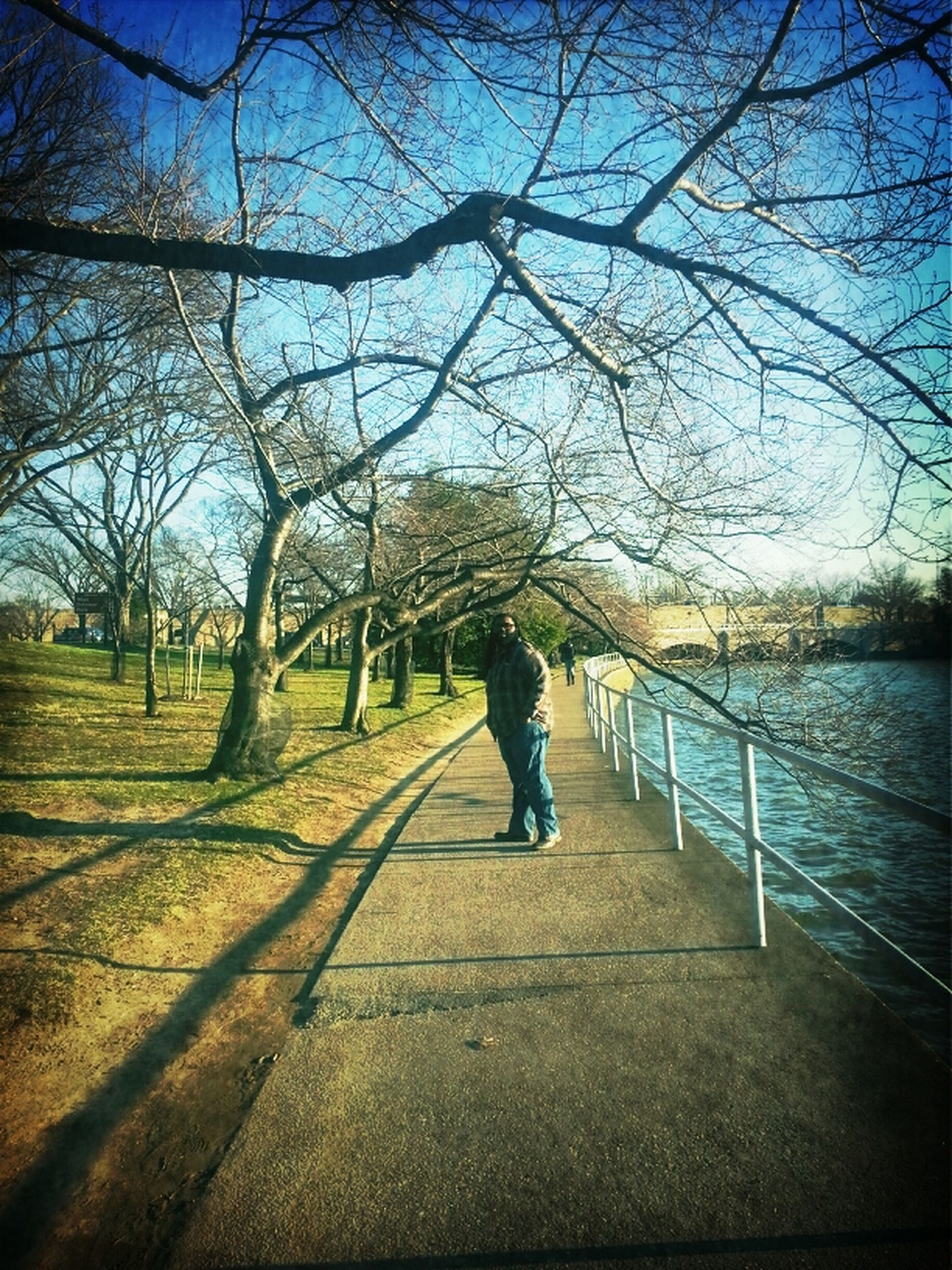 tree, full length, rear view, lifestyles, leisure activity, water, walking, the way forward, bare tree, lake, sky, person, day, nature, railing, standing, footpath, tranquility