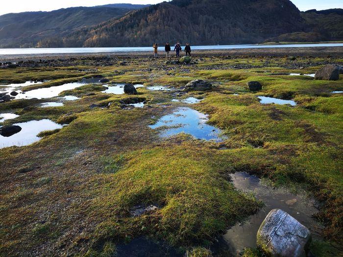 Friends walking on field by lake