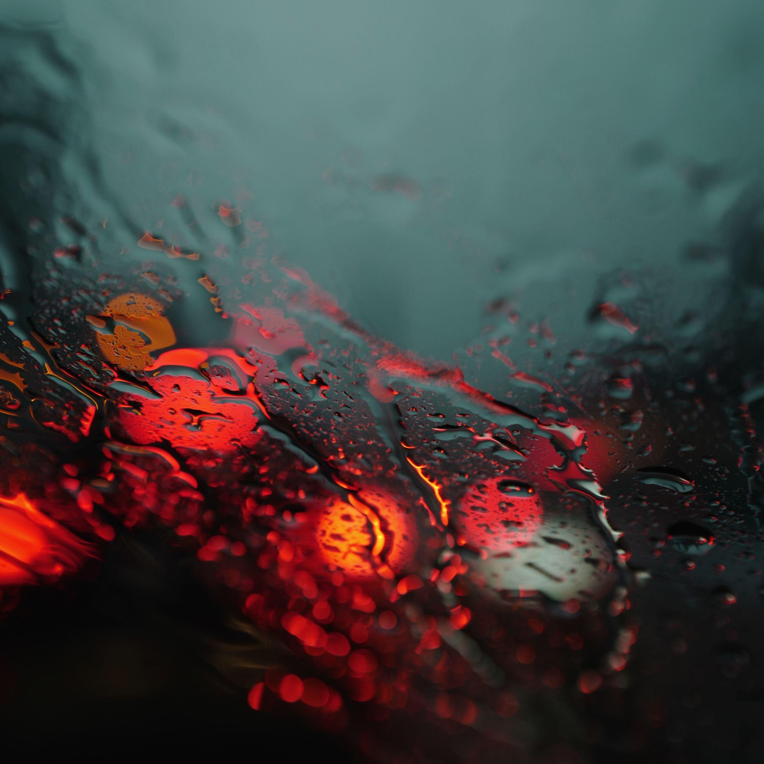 wet, red, nature, close-up, selective focus, no people, water, drop, rain, plant, outdoors, day, leaf, plant part, rainy season, motion, orange color, tree, raindrop, change