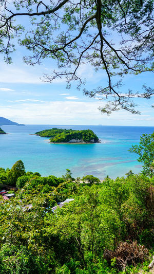 An Island at Sabang Island Indonesia with clear blue water Aceh Aceh, Indonesia INDONESIA Acheh Beauty In Nature Branch Day Forest Growth Horizon Over Water Idyllic Landscape Nature No People Outdoors Sabah Sabang Island Sabangisland Scenics Sea Sky Tranquil Scene Tranquility Tree Water