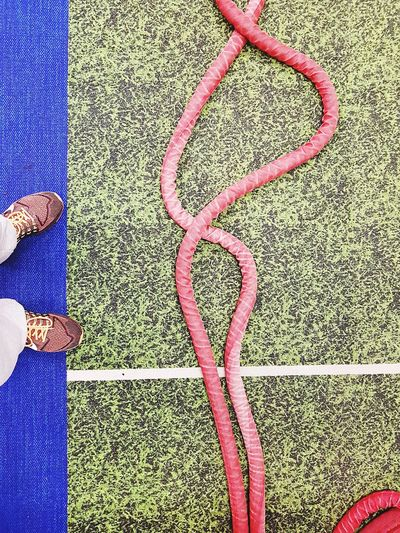 Out Of The Box Cardio High Angle View Gym Life Abstract Photography Fitness Training Battle Ropes Fitnesslife Training Day Lifestyles Smashed It Ropes Taking Photos Puffed Healthy Lifestyle Active Lifestyle
