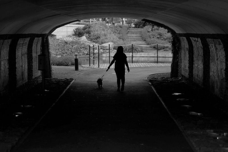 Rear View Of A Woman Walking With Dog In Tunnel