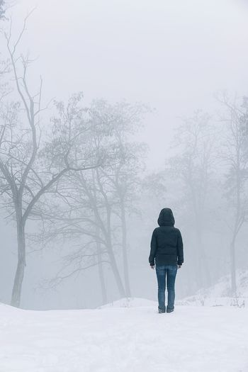 Nature Fog Foggy Mist Misty Misty Forest One Woman Only Woman People Warm Clothing Snowing Snow Cold Temperature Tree Winter Full Length Forest Frozen Tree Area Deep Snow
